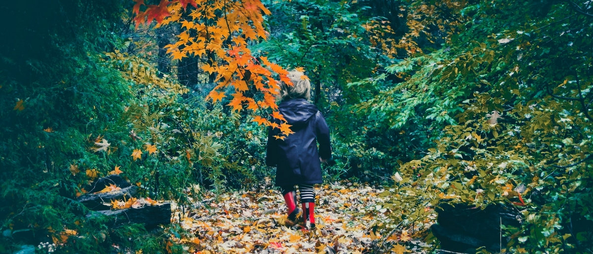 Observing the changing of your local seasons with your children can engage all of their senses. Child in raincoat in autumn forest setting.