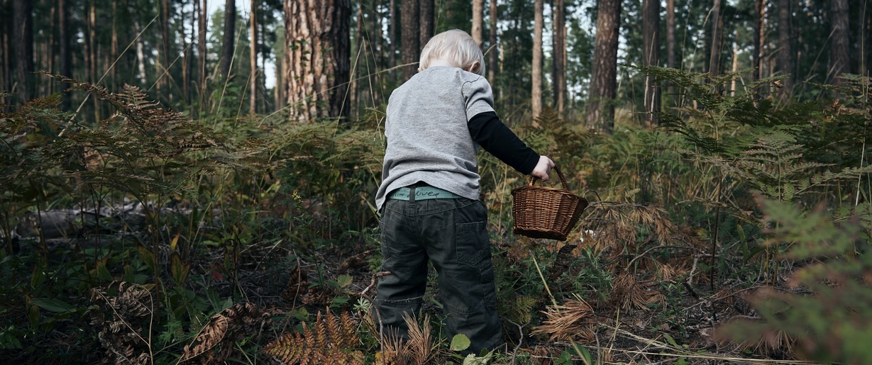 """A closely supervised """"thing finding"""" expedition in a natural setting is a joyous way to celebrate Earth Day with small children. Child exploring woods with a basket."""