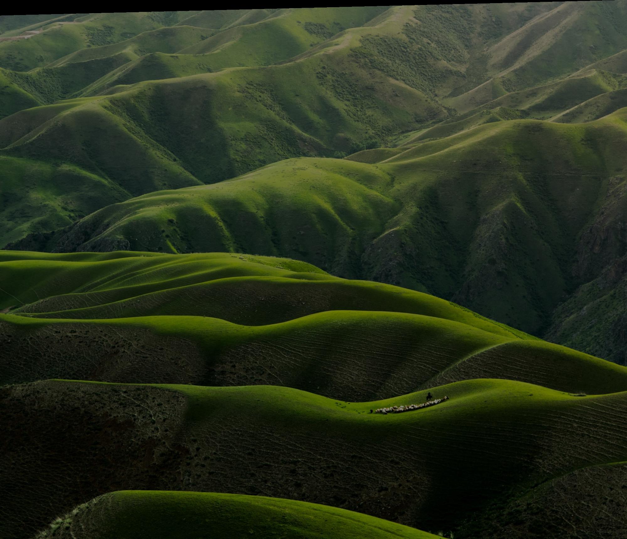 nature rolling hills